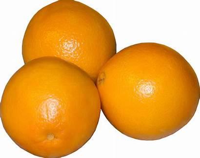Oranges Orange Fruit Lemon Sweet Valencia Background