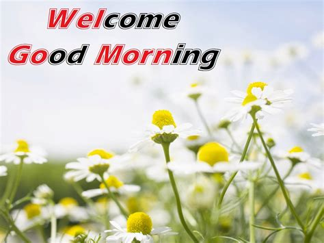 Good Morning Pictures, Images Commentsdbcom