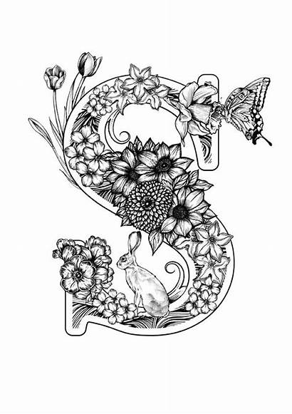 Coloring Letter Pages Calligraphy Lettering Adult Alphabet