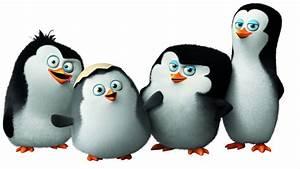 wallpaper, penguins, of, madagascar, , cute, penguin, , cartoon