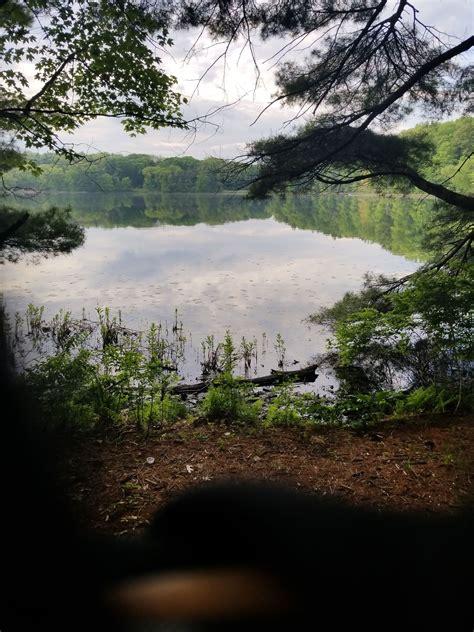 yankee springs recreation area michigan trails alltrails
