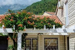Mediterrane Bäume Winterhart : vorgarten mediterran gestalten sch ne ideen mit einfacher umsetzung ~ Frokenaadalensverden.com Haus und Dekorationen