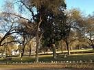 Photos for Mooney Grove Park - Yelp