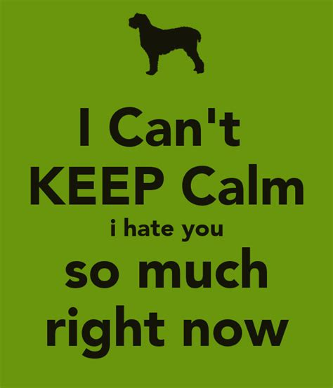 hate much right keep calm cant matic poster