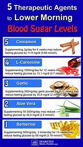 5 Therapeutic Agents To Lower High Morning Blood Sugar
