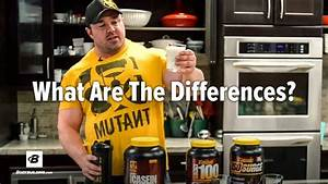 Protein Basics  Casein Vs Whey Blends Vs Whey Isolate