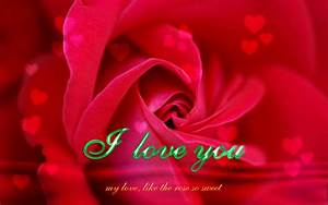 I Love You Quotes With Roses. QuotesGram