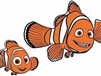 Nemo Clipart Fish Goldfish Finding Transparent Marlin
