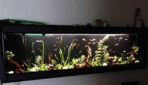 Troc Echange Aquarium Mural Aquaplasma 200cm Se Fix Au Mur