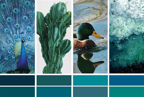 couleur bleu canard la couleur de l 233 e bleu paon ou bleu canard