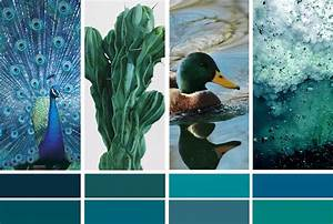 Couleur Bleu Canard Deco : la couleur de l 39 ann e bleu paon ou bleu canard turbulences d co ~ Melissatoandfro.com Idées de Décoration