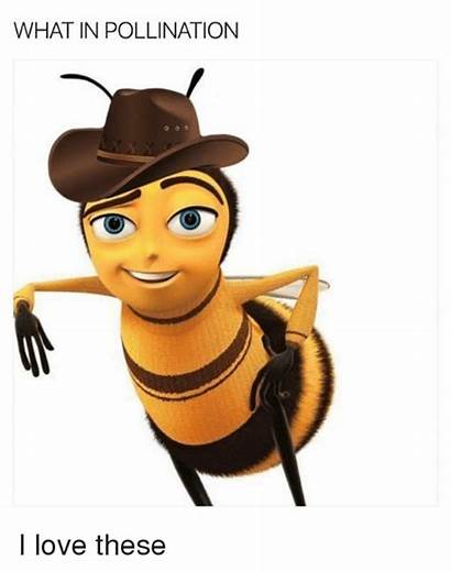 Pollination Dank Memes Clipart Whats Clipground 2021