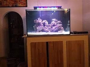 360 Liter Aquarium : aquarium filterbecken kleinanzeigen kaufen verkaufen bei ~ Sanjose-hotels-ca.com Haus und Dekorationen