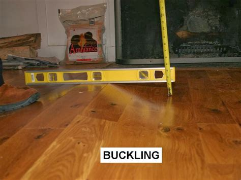 Wood Floor Buckling Up by Flooring Fanatic February 2014