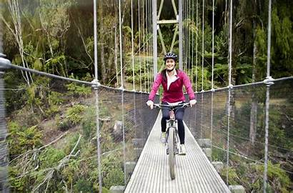 Megan Zealand Tourism Gale Trail Timber Infrastructure