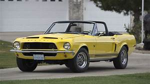 Shelby Convertible Is Only One of 43 Snakes in Existence