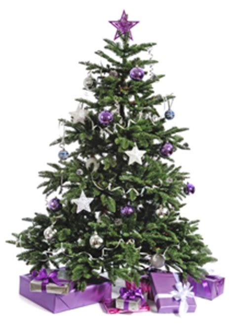 purple decorated christmas trees christmas decorating ideas on a budget 5322