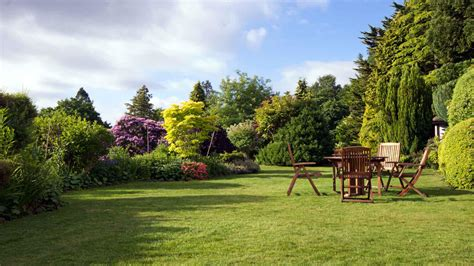 Small Trees For Landscaping • Arbor Day Blog