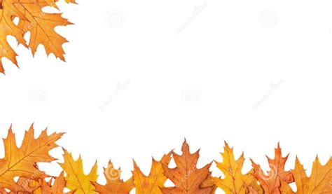Autumn Leaves Fall Backgrounds Powerpoint by Free Fall Clipart Backgrounds Png And Cliparts For Free