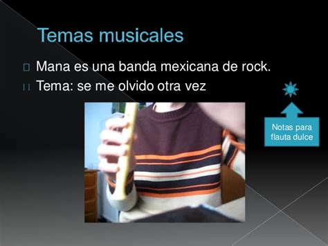 Organologia E Intrumentos Musicales