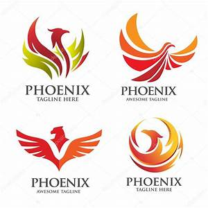 Fênix elegante conjunto de logotipo — Vetores de Stock ...