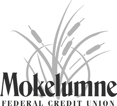 Ca Credit Union by Mokelumne Federal Credit Union Banks Credit Unions