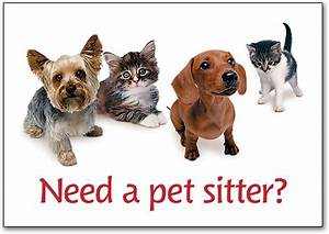 Increase interest in pet boarding smartpractice veterinary for Need a dog sitter