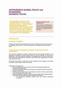 Free 22  Travel Policy Examples In Pdf