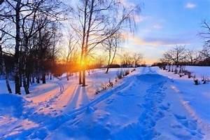 Sol de invierno si yo encontrara la estrella