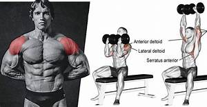Build Massive Shoulders With The Arnold Press