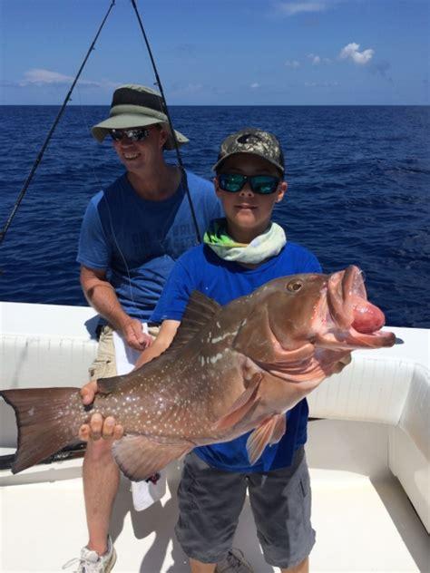 grouper gulf mexico fishing charter florida keys delphfishing