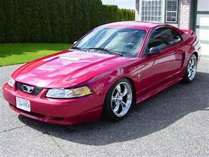 vetteeater 2000 Ford Mustang Specs, Photos, Modification Info at CarDomain