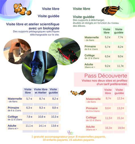 int rieur traduction flyer scolaires int 233 rieur aquarium de vannes