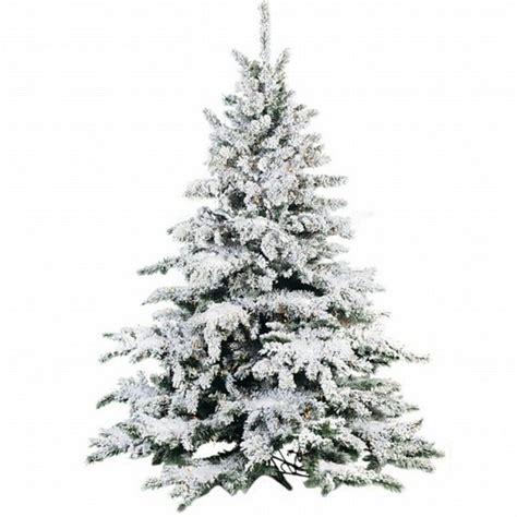 christmas tree with snow madinbelgrade