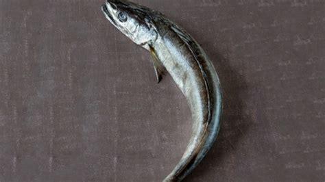 cuisiner le merlu cuisiner le merlu colin conseils de préparation et