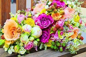 Gelb Rote Rosen Bedeutung : kostenlose foto pflanze blume strau gelb rosa flora rote rose pflanzen violett ~ Whattoseeinmadrid.com Haus und Dekorationen