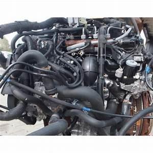 Moteur Ford Transit 2 2 Tdci 155 : engine motor ford transit 2 2 tdci 125 ch cyrb garanti ~ Farleysfitness.com Idées de Décoration