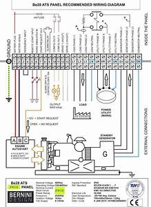 Budgit Hoist Wiring Diagram 3 Phase Download
