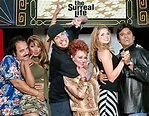 The Surreal Life (a Titles & Air Dates Guide)