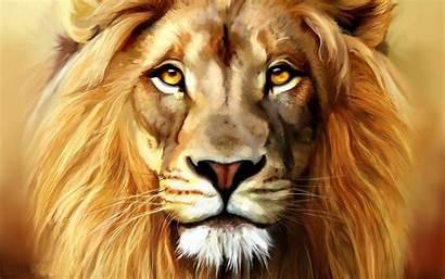 Lion Head Lions Face Wallpapers Desktop Theme