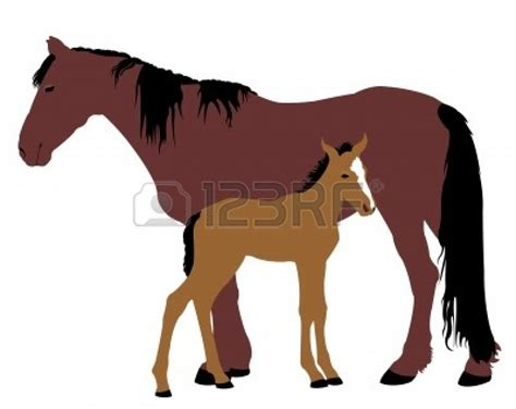 clipart mare foal clipart clipart panda free clipart images