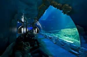 l aquarium de club changer d avis sur l aquarium de cineaqua kid friendly