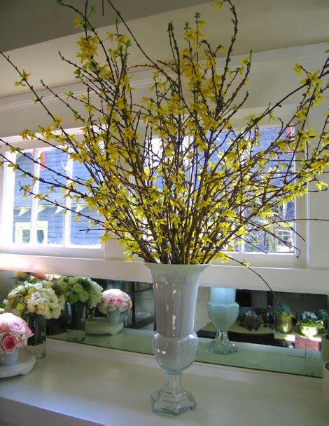 forsythia flower arrangements special spring blooms black dog design blog