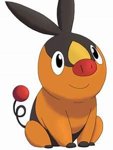50 Pokemon 11 Tepig