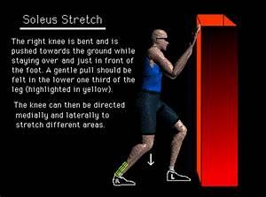 Calf Lower Leg Muscle & Achilles Tendon Stretch
