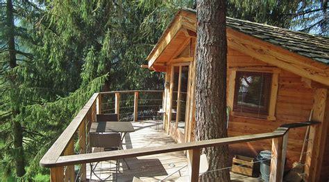 chambre d hotes dans les arbres st jean d 39 aulps la cabane dans les arbres gîte chambre