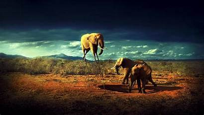 Africa Wallpapers Definition