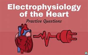 Electrophysiology Of The Heart  Study Guide And Practice