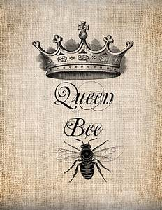 Antique Queen Bee Crown Script Illustration by ...