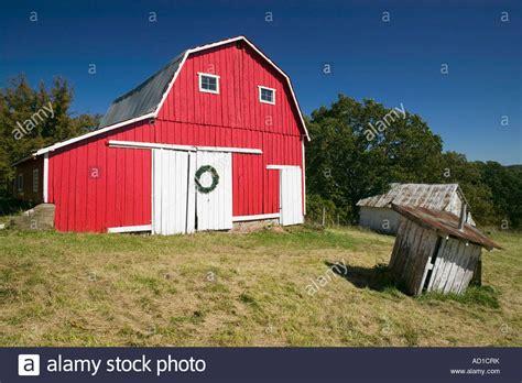 Red Barn Filled Bones. Red Barn Filled Dog Bones Chicken